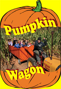 The Pumpkin Wagon Ride goes through its own corn maze at Yahoo Farm.