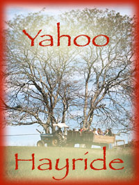 Climb aboard the breathtaking Yahoo Hayride